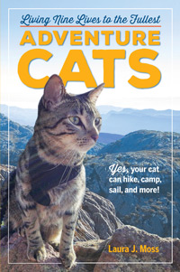 adventure-cats-book-cover-02