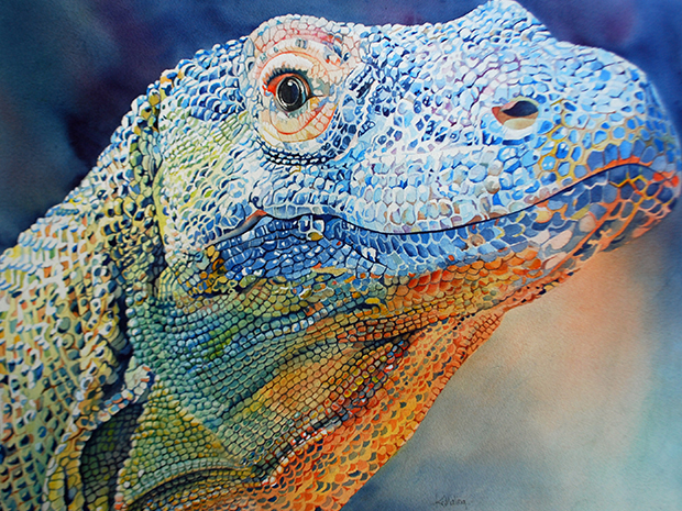 komodo dragon watercolor by Kathleen Maling